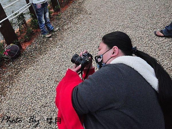 桃園新屋–黃色小鴨來桃園–桃園地景藝術節,療癒系的黃色小鴨 @民宿女王芽月-美食.旅遊.全台趴趴走