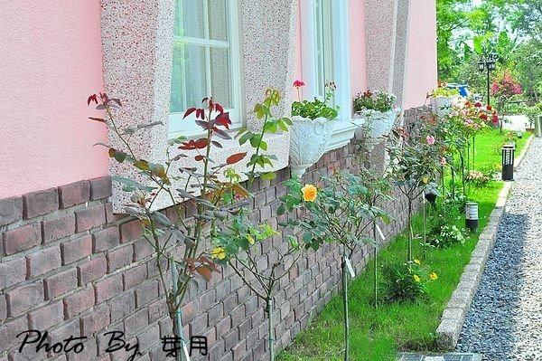 宜蘭民宿推薦冬山鄉玫瑰貝兒花園