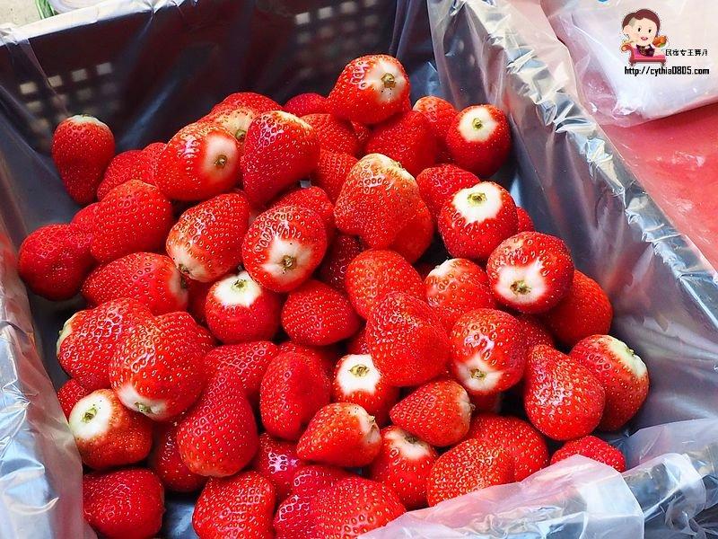 桃園大廟美食-同心麻糬-超大顆日式草莓大福太誘人了,沒預訂真的吃不到 @民宿女王芽月-美食.旅遊.全台趴趴走
