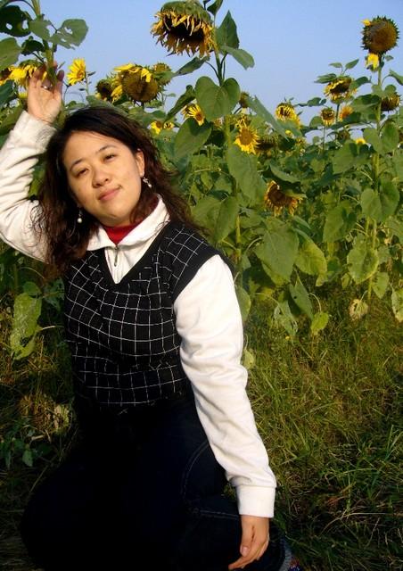 數大便是美-台糖向日葵 @民宿女王芽月-美食.旅遊.全台趴趴走