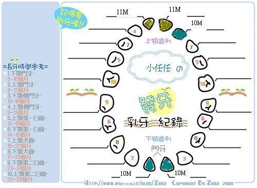 小任-11M記錄-準備迎接周歲 @民宿女王芽月-美食.旅遊.全台趴趴走