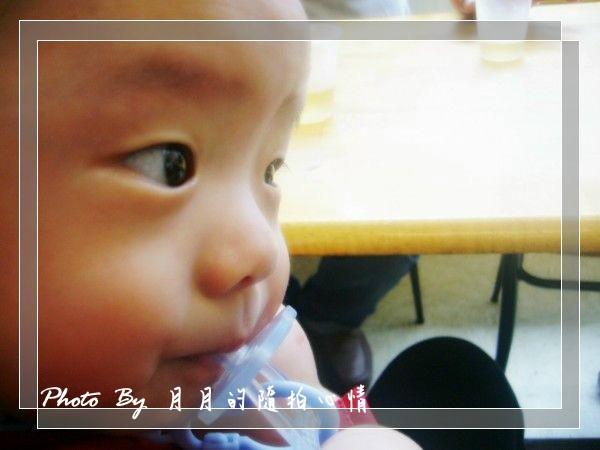 心情-回顧2010–多了一隻牛寶貝 @民宿女王芽月-美食.旅遊.全台趴趴走