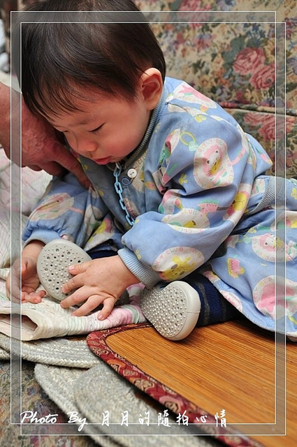 體驗-安格絲collegien兒童用低筒室內鞋襪 @民宿女王芽月-美食.旅遊.全台趴趴走