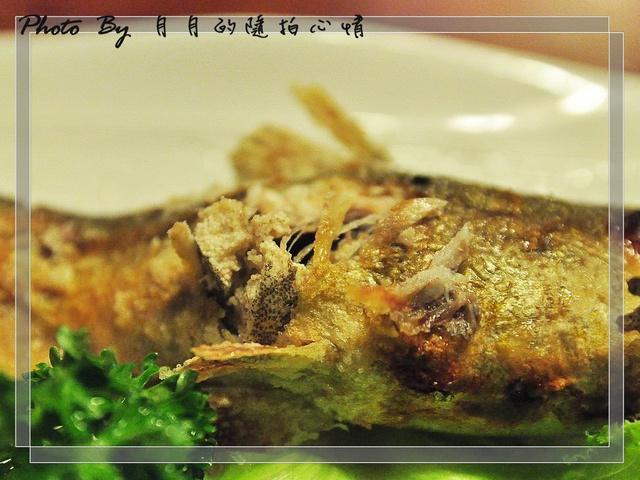 板橋-燒肉天國–精緻單點,優質享受–偶爾也要當個貴婦 @民宿女王芽月-美食.旅遊.全台趴趴走